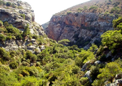 walking-dimension-southcrete-east (15)