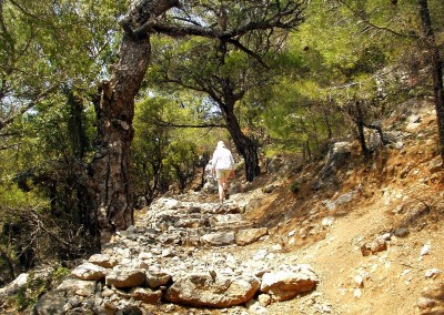 walking-dimension-southcrete-east (17)