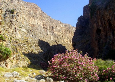 walking-dimension-southcrete-east (19)