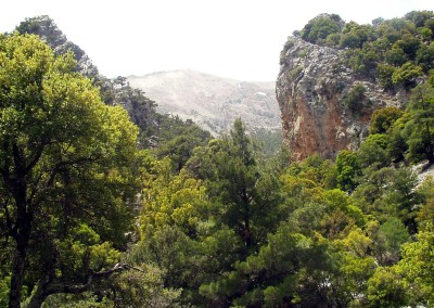 walking-dimension-southcrete-east (28)